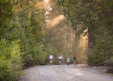 Where to Celebrate National Bike Month