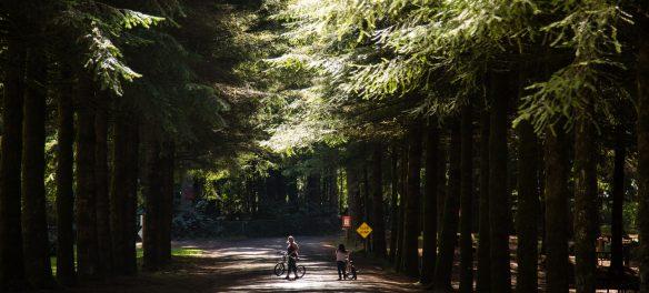 Paradise RV Campground – Silver Creek, WA